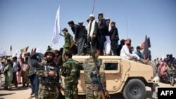 طالبانو د اوربند په اړه د حکومت غوښتنه رد کړې ده