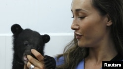 Diễn viên Maggie Q, đại sứ thiện chí của Tổ chức Cứu hộ Gấu đen ở Việt Nam, đang chơi đùa với một chú gấu con tại vườn quốc gia Tam Đảo (hình chụp năm 2009).