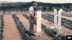 This 1971 photo provided by The World Food Prize Foundation shows Dr. Daniel Hillel introducing drip irrigation in Japan. Hillel, who is credited with developing drip irrigation methods that conserve water while allowing food to be grown in some of the w