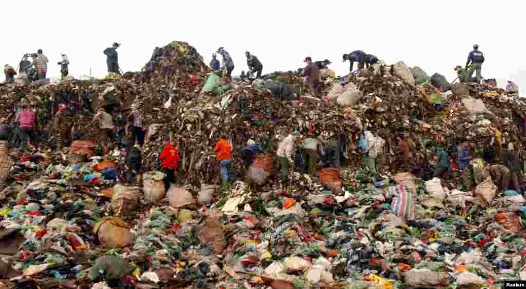افراد در حال زیر و رو کردن زباله ها در یک مرکز جمع آوری زباله در هانوی، ویتنام