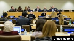 지난해 10월 뉴욕 유엔본부에서 인권 문제를 다루는 유엔총회 제3위원회 회의가 열리고 있다.