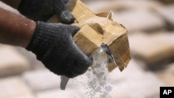 Bolivia es uno de los mayores productores de coca en el mundo, mientras que Venezuela es refugio de los cárteles de drogas.
