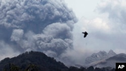 Gunung Kelud, saat erupsi, terlihat dari desa Anyar, Blitar, 14 Februari 2014 (Foto: dok).