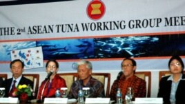 Pertemuan kelompok kerja tuna ASEAN di Yogyakarta diikuti oleh Malaysia, Singapura, Vietnam, Brunei, Filipina, Thailand, Burma, Laos, Kamboja dan Indonesia sebagai tuan rumah (31/5).