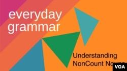 Understanding NonCount Nouns
