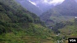 ເຂດພູດອຍ Cordillera ຂອງຊາວ Ifugaos ໃນເຂດພາກເໜືອຂອງ ຟິລິບປິນ ທີ່ເຣັດນາຢູ່ຕາມເຈີ້ຍພູ ແລະມີວີທີການຄຸ້ມຄອງນໍ້າໄດ້ດີທີ່ ສຸດ ແລະມີນໍ້າຢ່າງພຽງພໍຢູ່ຕະຫຼອດ.