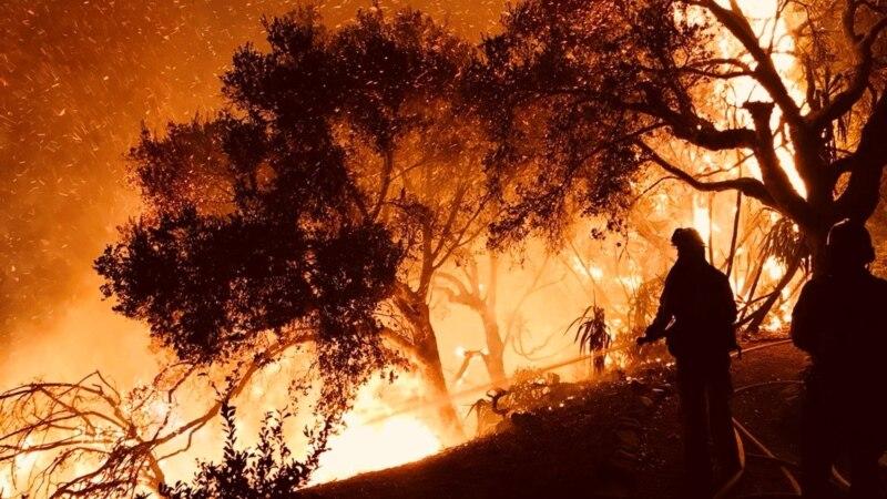 Пожарите во Калифорнија ја земаа првата жртва