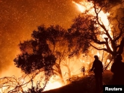 지난 10일 미국 캘리포니아주에서 발생한 대형 산불이 카핀테리아 인근 주택가로 번져 소방관들이 진화작업을 하고 있다.