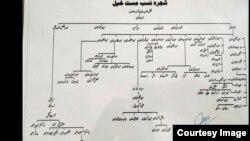 د غازي عمراخان شجره