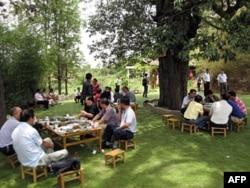 游客在农家乐的树阴下用餐