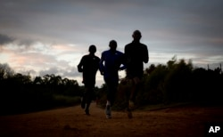 Kenyan athletes train just after dawn, in Kaptagat Forest in western Kenya.