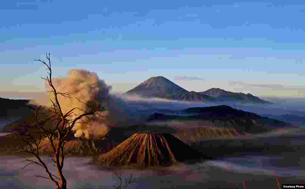 2284090 - Bromo is an exotic montain in Indonesia