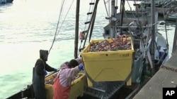 Moçambique: nova lei de pescas engloba a aquacultura