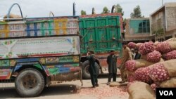Hasil panen diangkut ke truk Afghanistan untuk dibawa ke Pakistan. (VOA/Bethany Matta)