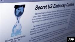 Wikileaks açıqlamalarında adları hallanan şəxslərə xəbərdarlıq edilib