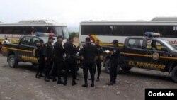 Autobuses en los que fueron trasladados los cubanos expulsados de Guatemala.