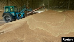 A tractor sorts through grain at a warehouse near the village of Moskovskoye, outside Stavropol in southern Russia, June 26, 2013.