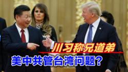 海峡论谈:川习称兄道弟 美中共管台湾问题?