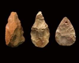 Multipurpose tools used to chop wood, butcher animals, and make other tools -- dominated early human technology for more than a million years.