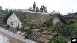 지난 30일 평안남도 안주시에서 홍수를 피해 지붕으로 올라간 주민들.