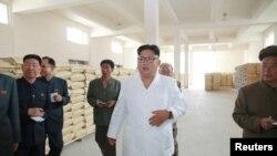 김정은 북한 국무위원장이 삼지연군 감자 가공공장을 현지지도했다고 관영 조선중앙통신이 10일 보도했다.