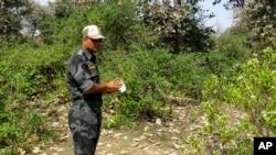 Офицер индийской полиции осматривает место преступления в лесу рядом с храмовыми комплексами в Орчхе. Мадхья Прадеш, Индия 16 марта 2013 года
