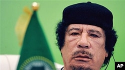 Libyan leader Moammar Gadhafi talks during the first session of the 3rd Africa-EU Summit in Tripoli, Libya, November 29, 2010 (file photo)