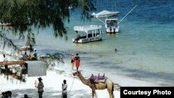 Mombasa là một địa điểm du lịch có nhiều người nước ngoài lui tới