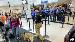 Chó nghiệp vụ ngửi tìm chất nổ tại phi trường thành phố Salt Lake (ảnh chụp ngày 13/6/2017)