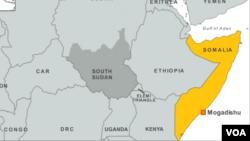 """图中黄色地区为索马里,有""""非洲之角""""之称。"""