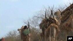 Сушата во Сомалија - дел од поголем проблем со животната средина