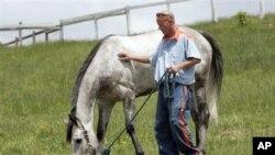 Yayasan Thoroughbred Retirement Foundation, yang berupaya menyelamatkan kuda-kuda pacuan yang sudah dipensiun dari kemungkinan penganiayaan atau dikirim ke rumah jagal, bekerjasama dengan pihak penjara untuk mempekerjakan para napi mengurus kuda-kuda itu