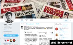 环球时报总编胡锡进推特页面截图