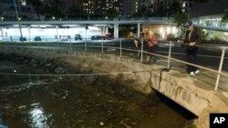 지진 해일의 영향으로 하와이 알라 와이 항구 인근으로 떠내려온 부유물들
