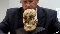 Investigadores del Museo Smithsonian dijeron haber hallado huesos de una niña con claras huellas de antropofagia.