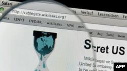 Wikileaks nói trang web của họ bị tấn công