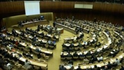 تعيين گزارشگر ويژه حقوق بشر برای ايران در دستور کار اجلاس ژنو قرار گرفت