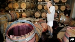 Winemaker Tom Montgomery stands in wine and reacts to seeing damage following an earthquake at the B.R. Cohn Winery barrel storage facility, Aug. 24, 2014, in Napa, California.