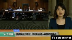 VOA连线(李逸华):美参院召开听证,讨论外企进入中国市场挑战