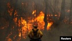 Kalifornijski vatrogasac posmatra tokom šumskog požara Glas u Kalistogi, Kalifornija, 2. oktobra 2020. (REUTERS/Stephen Lam)