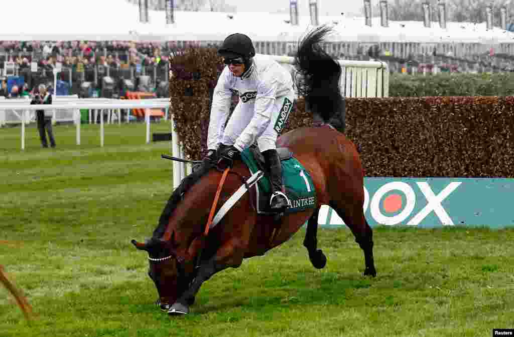 Brain Power, ridden by Nico de Boinville, falls down in the 13:45 Big Buck's Celebration Manifesto Novices' Chase in Liverpool, Britain, April 12, 2018