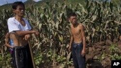 Những người dân Bắc Triều Tiên đứng cạnh cánh đồng bị hư hại vì trận lụt hồi tháng 7