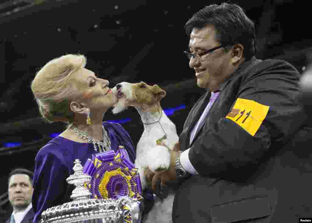"After All Painting the Sky, a wire fox terrier, is held by her handler Gabriel Rangel (right) as she kisses judge Betty Regina Leininger after winning ""best in show"" at the 138th Westminster Kennel Club Dog Show, Madison Square Garden, New York City, NY, Feb. 11, 2014."