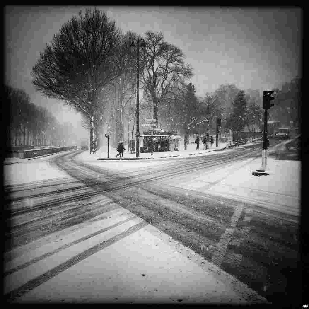 درختان پوشیده از برف در پاریس