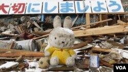 El terremoto y el posterior tsunami dejaron casi 23.000 muertos o desaparecidos, en su mayoría en ciudades costeras arrasadas.