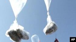 16일, 대북전단 풍선을 날리는 탈북자 단체들