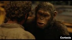 """Scena iz filma """"Planeta majmuna - Revolucija"""""""