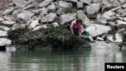북한의 주요 쌀 생산 지역인 황해도와 평안도를 비롯해 전국에서 가뭄피해가 심각하다고 북한 '조선중앙통신'이 보도한 가운데, 지난 달 20일 평안북도 삭주군 압록강변에서 한 소녀가 일을 하고 있다. (자료사진)