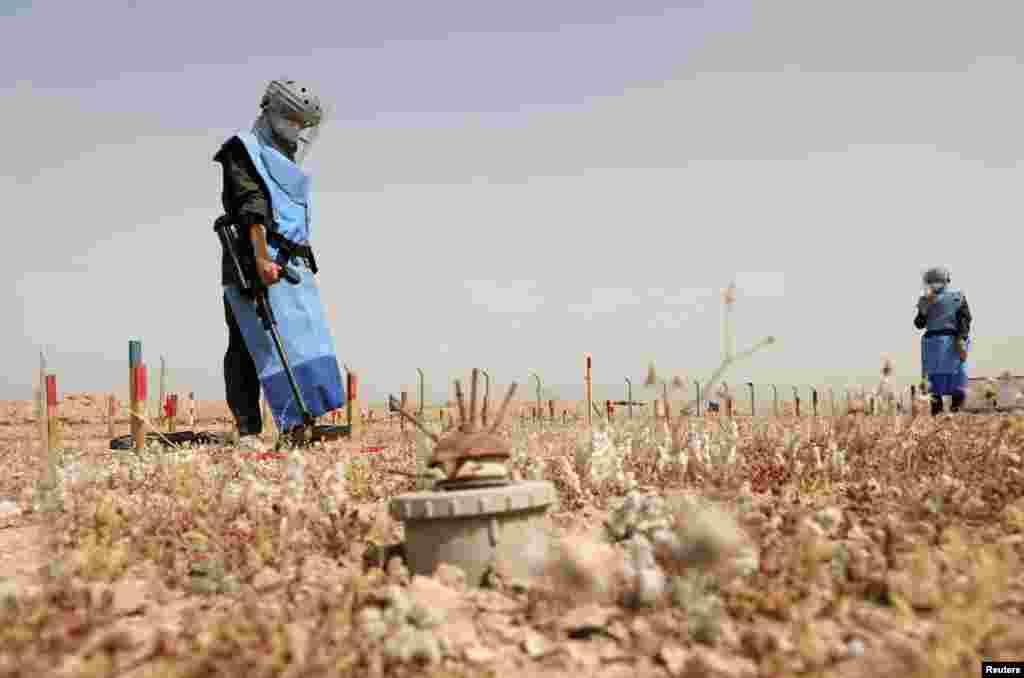 Women participate to clear landmines in Basra, Iraq.