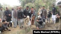 عکس آرشیف - نهال شانی در جلال آباد